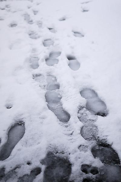 写真:積もった雪に残った足跡